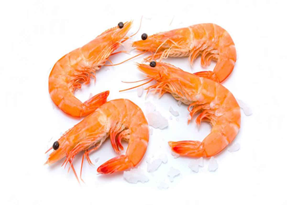 Shrimps Large 500g